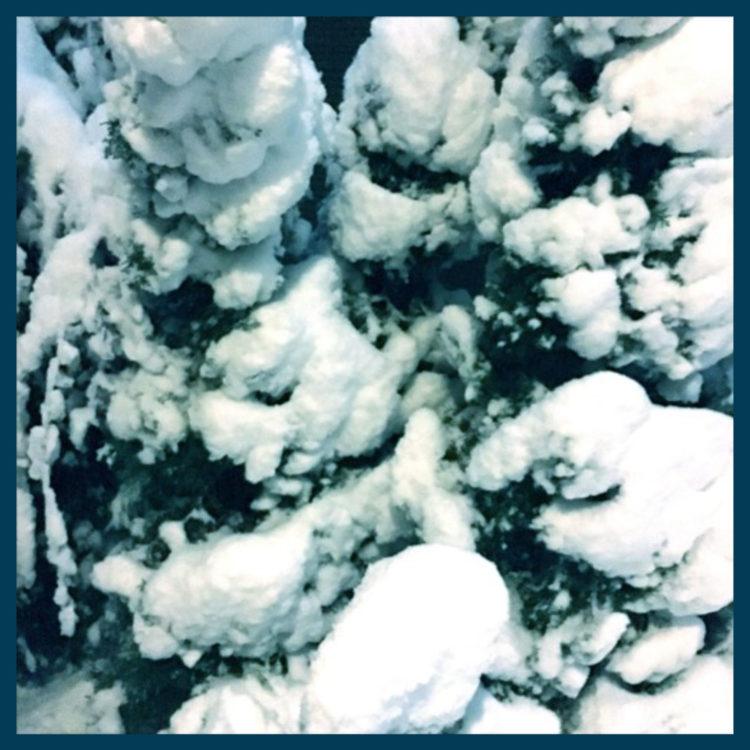 snowhill2am
